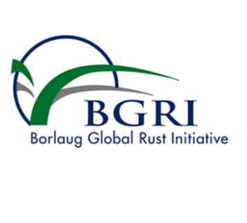 Borlaug Global Rust Initiative