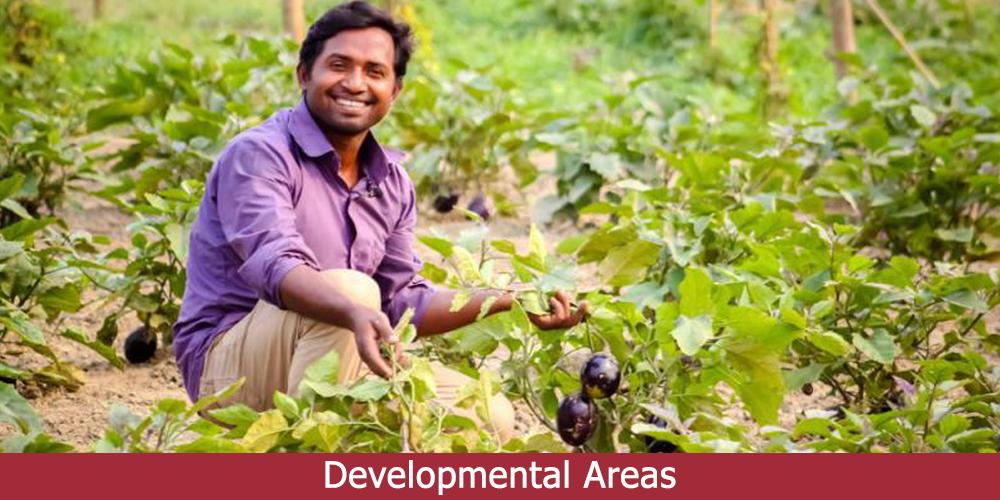 Developmental areas