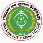 Bangladesh Rice Research Institute