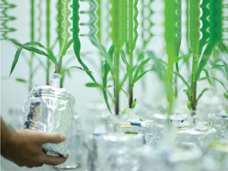 Opportunities and Benefits for Indian Companies in GM Research