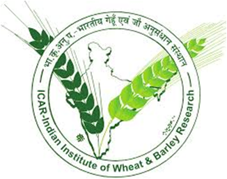 Indian Institute of Wheat and Barley Research