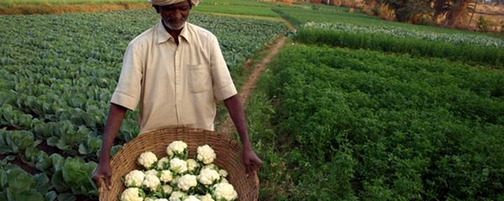 Climate Smart Agriculture for mitigating Climate Change