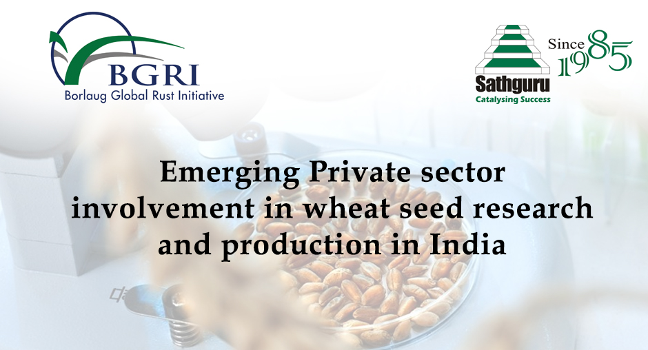 Emerging Private sector involvement in wheat seed research and production in India