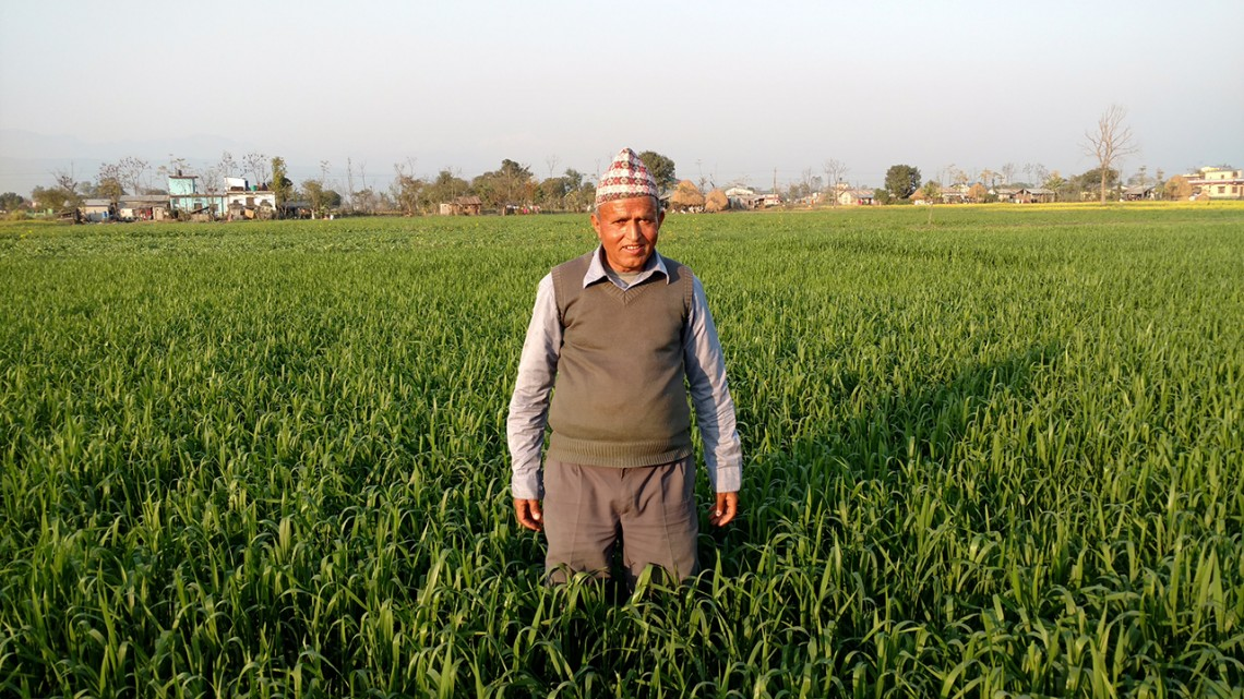 Community-based Seed System Initiative thrives in Nepal