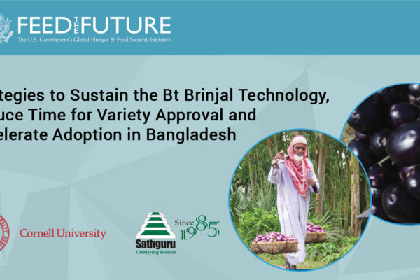 Strategies to Sustain the Bt Brinjal Technology, Reduce Time for Variety Approval and Accelerate Adoption in Bangladesh
