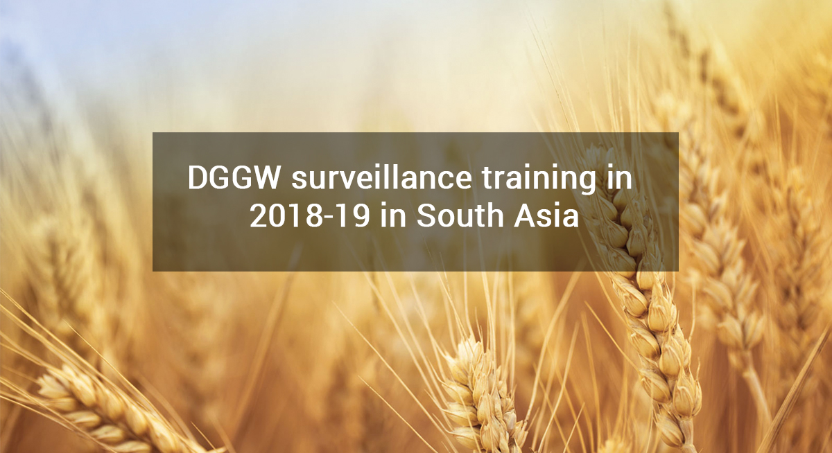 DGGW surveillance training in 2018-19 in South Asia