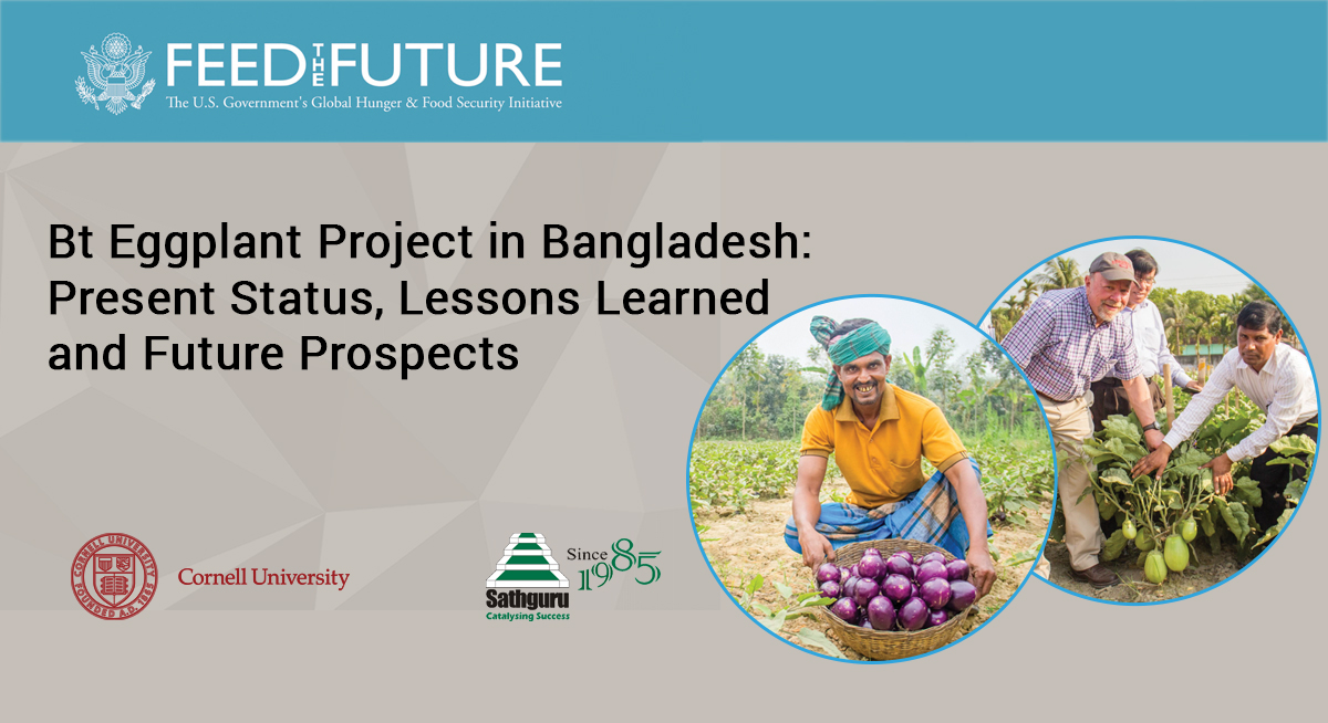 Bt Eggplant Project in Bangladesh: Present Status, Lessons Learned and Future Prospects