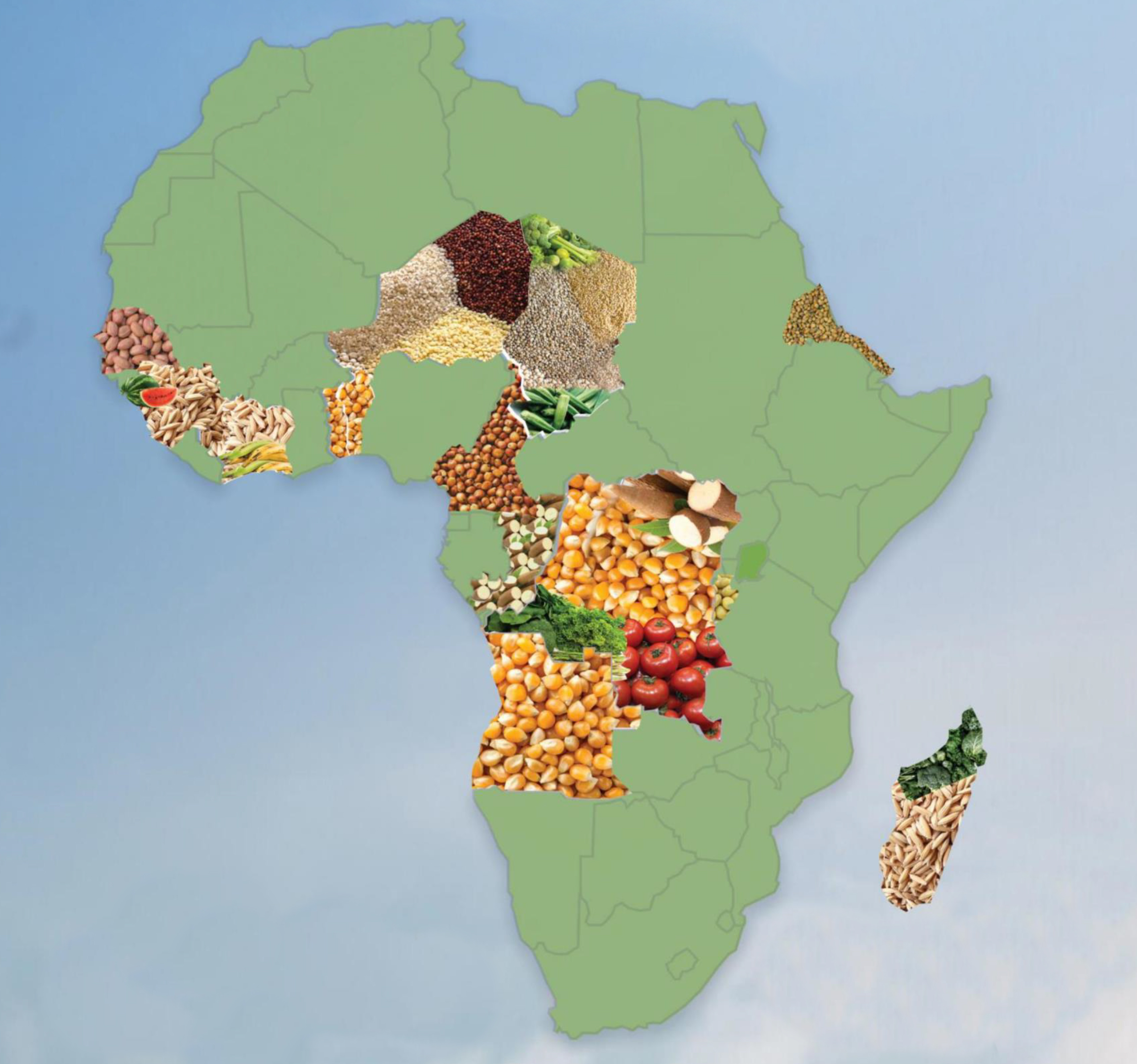 Study of Seed Systems development opportunities in 15 African countries and development of business plan for next 5 years for seeking funding opportunities