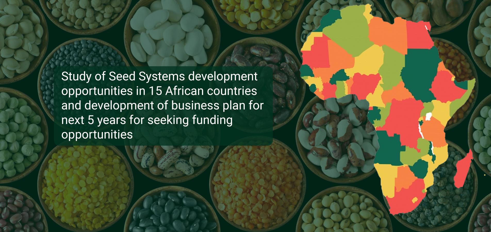 SSG-2020-2025-Business-Plan-Summary