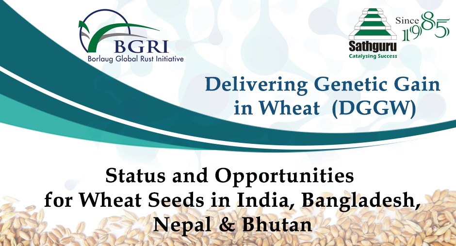 Status And Opportunities For Wheat Seeds In India, Bangladesh, Nepal & Bhutan