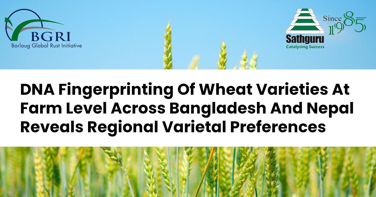 DNA Fingerprinting Of Wheat Varieties At Farm Level Across Bangladesh And Nepal Reveals Regional Varietal Preferences