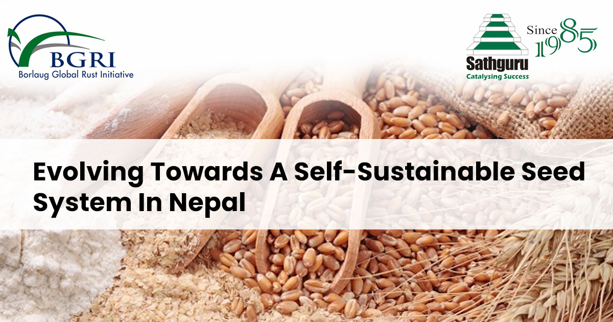 Evolving Towards A Self-Sustainable Seed System In Nepal-poster