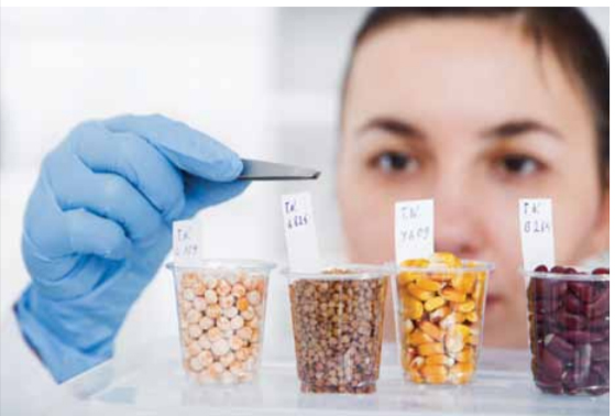 Role of Whole Genome Sequencing in Food Safety