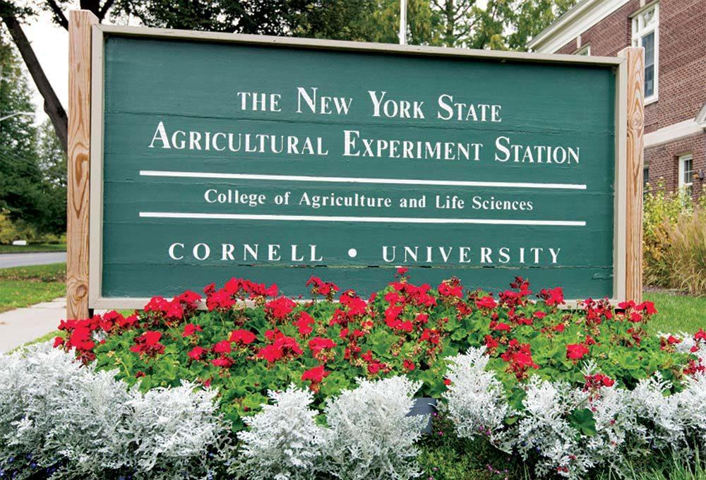 Food-and-Agri-Executive-Management-Program