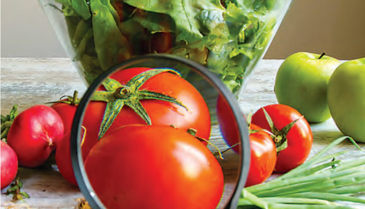 Whole Genome Sequencing and its role in Food Safety