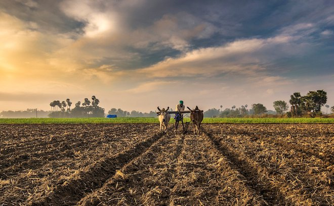 Vijayaraghavan Kannan of Sathguru Catalyser Advisors on Agribusiness investing and Covid Game Changers