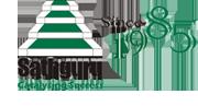 sathguru logo