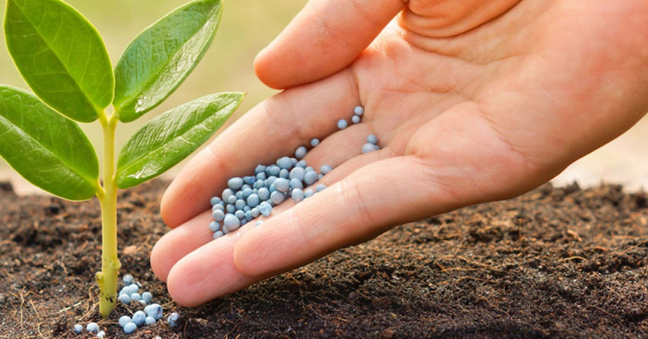 https://www.sathguru.com/wp-content/uploads/2020/07/Differentiation-strategy-for-an-Indian-fertilizer-major-ushers-an-era-of-custom-fertilizers-1280x671.jpg