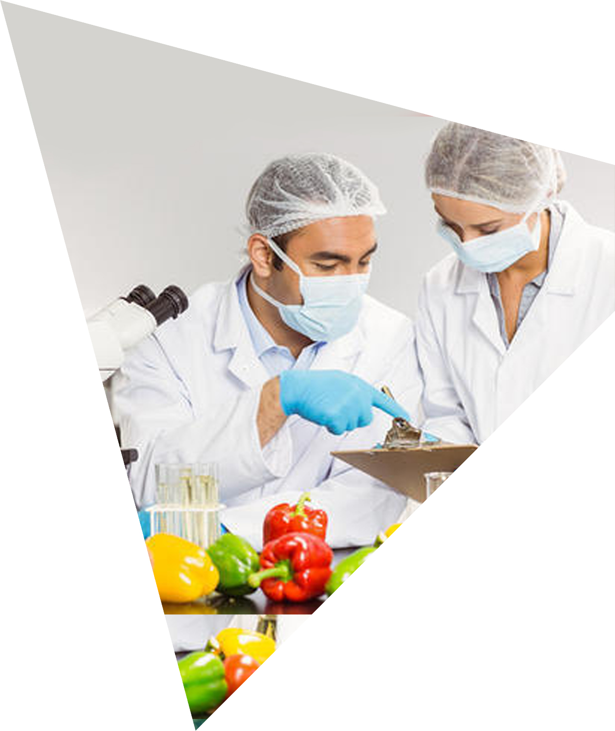 Enhanced exports to US and other markets – facilitated by strengthened food safety compliance