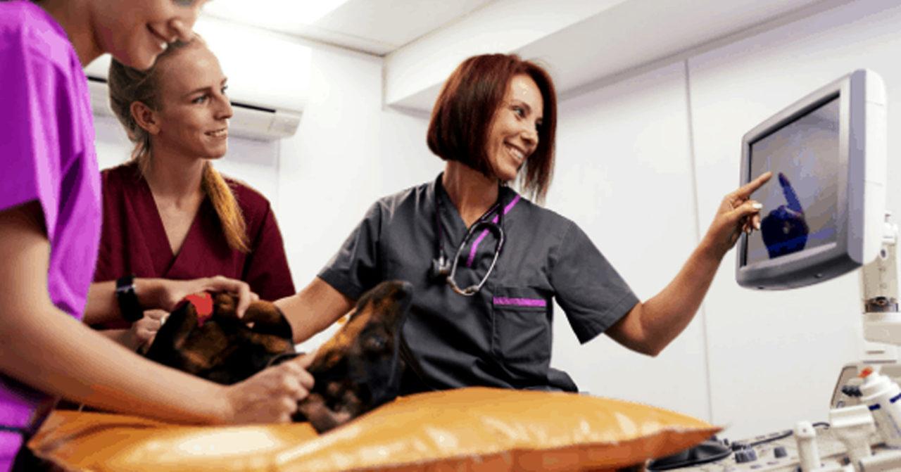 https://www.sathguru.com/wp-content/uploads/2020/07/Technology-access-for-several-emerging-veterinary-vaccines-for-a-leading-veterinary-vaccine-company-1280x671.jpg