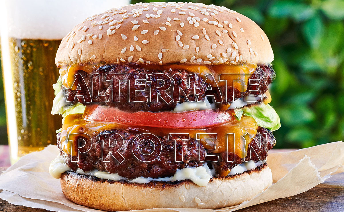 https://www.sathguru.com/wp-content/uploads/2020/07/banner-alternate-proteins-segment.jpg