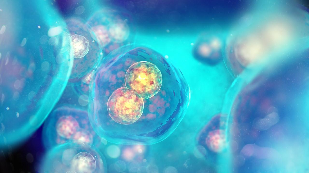 https://www.sathguru.com/wp-content/uploads/2020/07/ip-assessment-valuationfor-a-vc-funded-molecular-diagnostic-venture.jpg