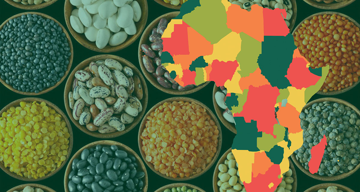 https://www.sathguru.com/wp-content/uploads/2020/07/seed-systems-development-in-african-1200x640.jpg