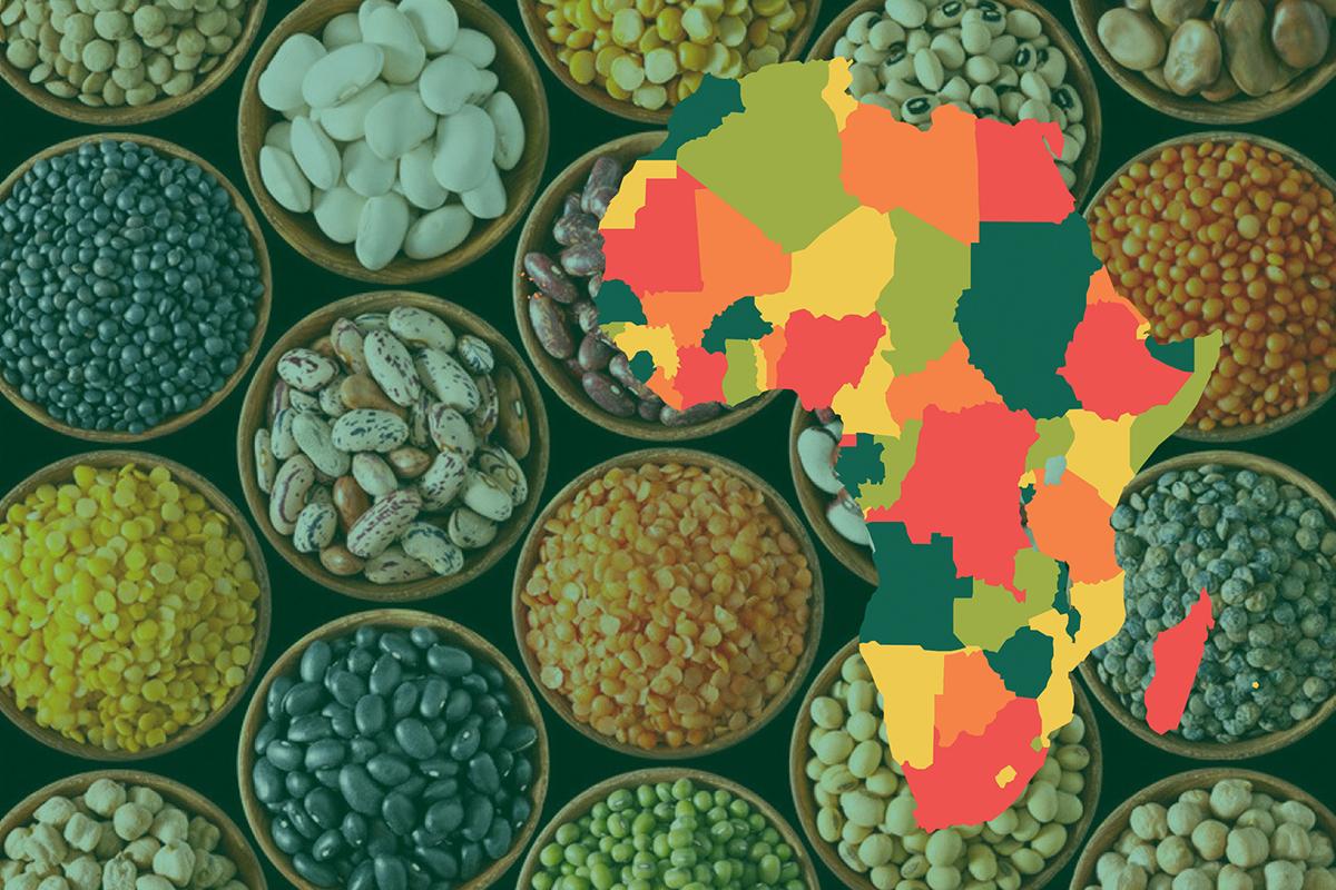 https://www.sathguru.com/wp-content/uploads/2020/07/seed-systems-development-in-african.jpg