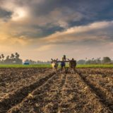 Vijayaraghavan-Kannan-of-Sathguru-Catalyser-on-Agribusiness-investing